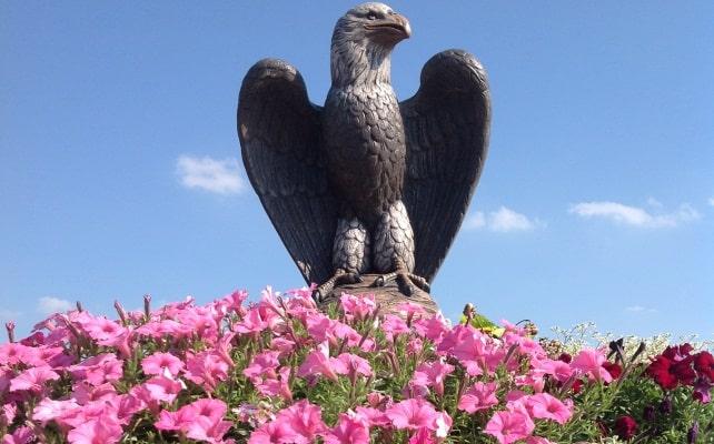 Eagle_planter