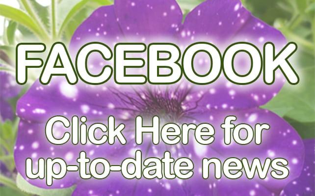 facebook2021