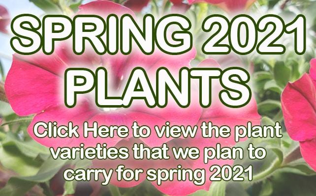 plants2021